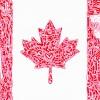 The Canada (2015)