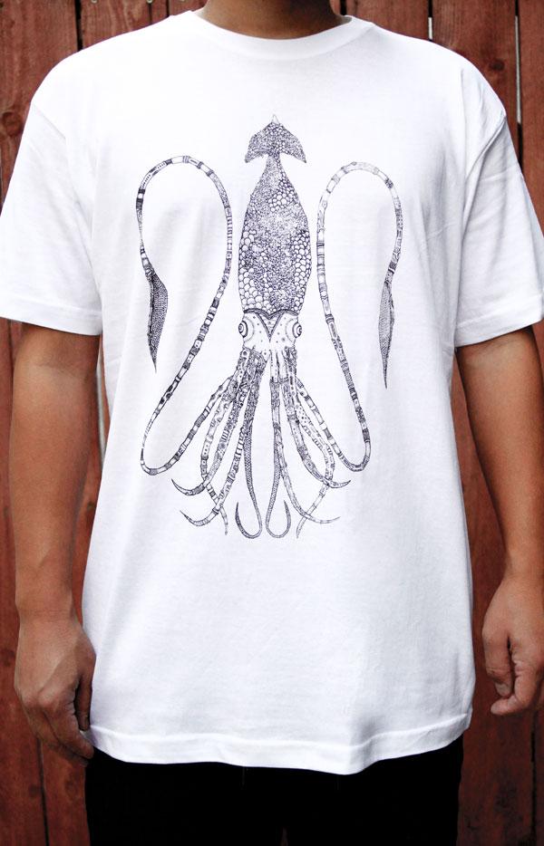 Squid L